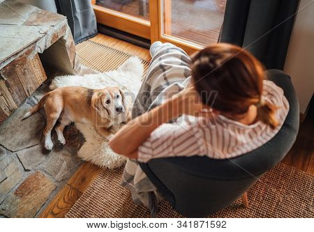 Young Female Sitting In Comfortable Chair In Country House  Living Room And Dreaming And Her Beagle