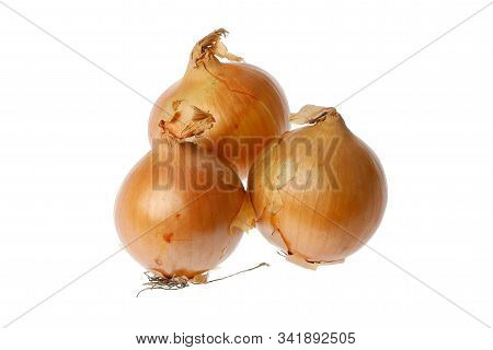 Three Common Onions Isolated On White Background.