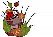 A little ladybird on a brown mushroom poster