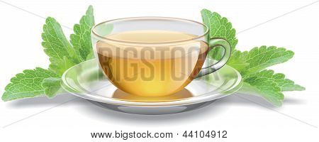 tea cup with stevia leaves