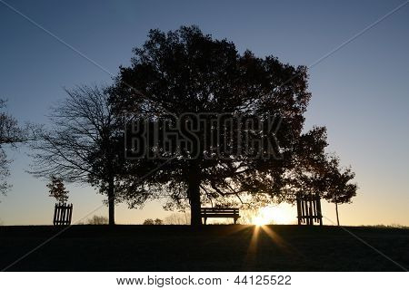 Sunrise Path