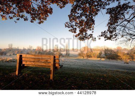 Morning Seat