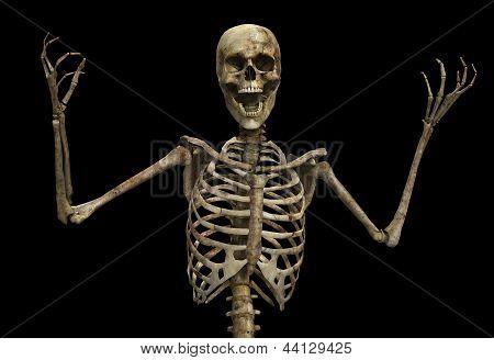 The Skeletal Scream
