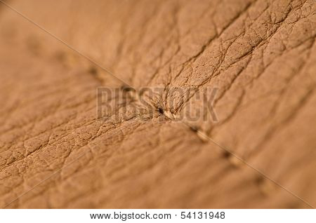 Natural leather macro