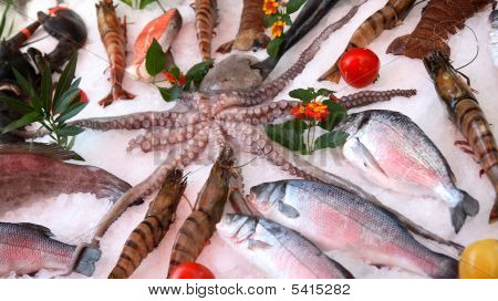 Fresh seafood with greens on ice.Beautiful picture. poster