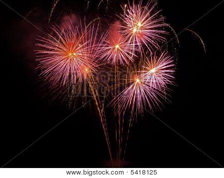 July 4Th Fireworks Dandelion Burst