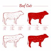 Beef meat cuts scheme, red on white poster