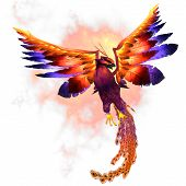 The Phoenix firebird is a mythical symbol of regeneration or renewal of life. poster
