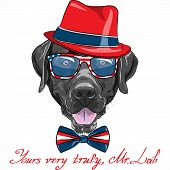 smiling black hipster dog breed Labrador Retriever in a red hat glasses and bow tie poster