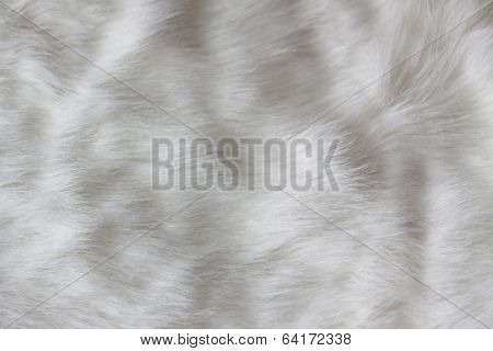 White Faux Fur As An Abstract Background