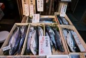 Fish for sale in the Tsukiji Fish market in Tokyo, Japan poster