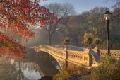 Early morning in the fog in Central Park New York City by the bow bridge poster