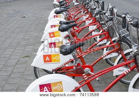 Bicycles for rent parked on the street