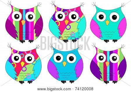six colorful owl pattern isolated on white poster