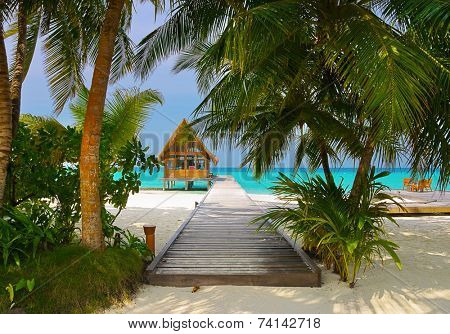 Diving club and cafe on a tropical island - travel background