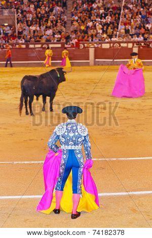 Matador and bull in corrida at Madrid Spain