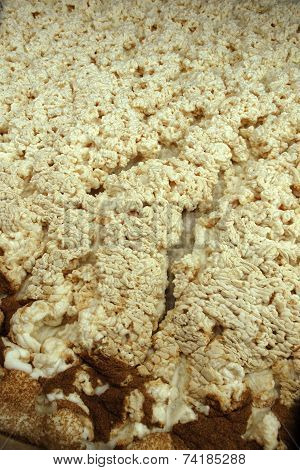 The foam during fermentation in beer brewery fermentation room poster