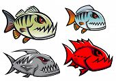 Cartoon olorful pirhana fish characters with sharp jagged teeth in different designs, vector illustration poster