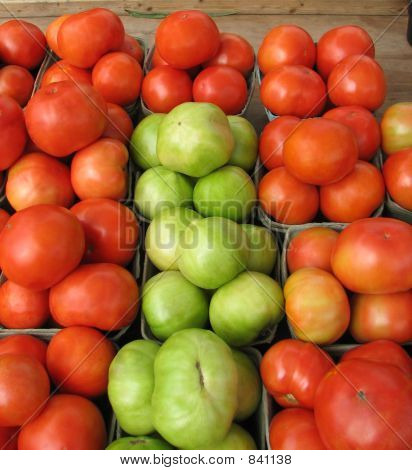 Tomatoes 318