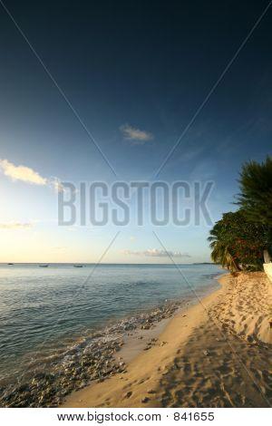 Tropical beach 6