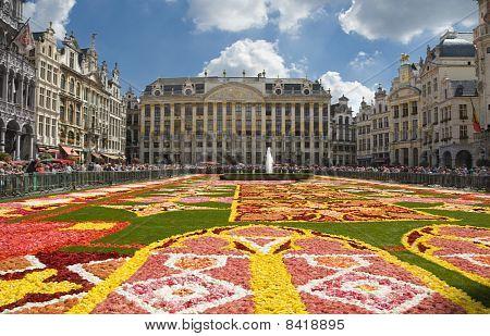 Flower Carpet In Brussels 2010
