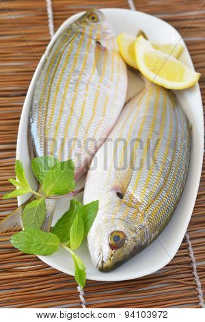 Two raw Western Atlantic seabreams with lemon and mint on a white dish