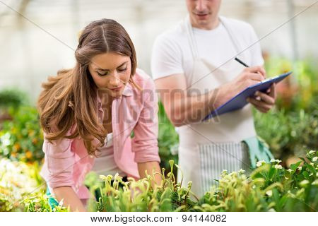 Young  colleagues doing inventory of plants, flowers and fruits in hothouse