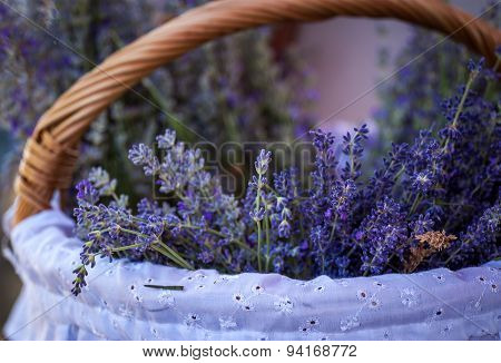 Basket with a fresh lavender