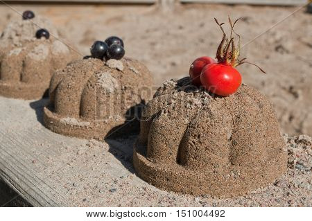 Sand cakes with rose-hip and chokeberries in autumn season.