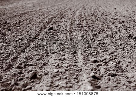 plowed land with furrows going off into the distance