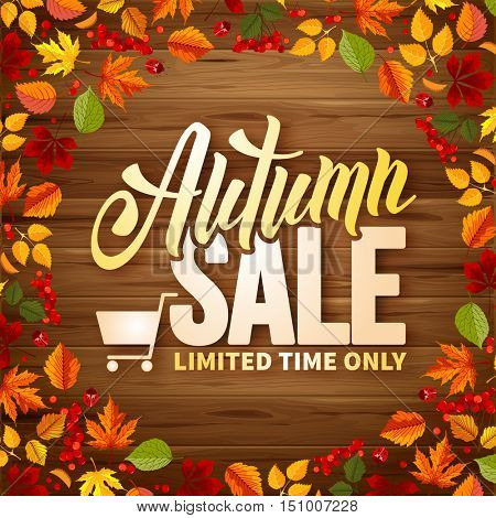 Seasonal autumn sales background with colored leaves on wooden desk. Lettering with calligraphic inscription Autumn Sale. Vector stock illustration.