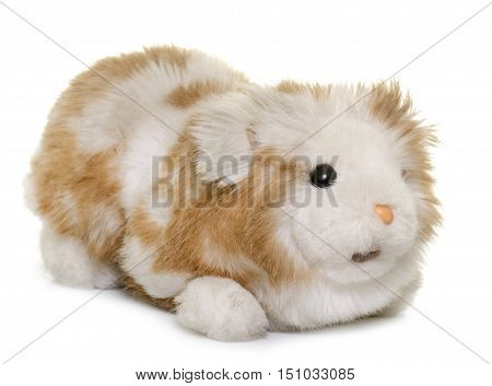 cuddly toy guinea pig in front of white background