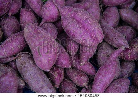 Sweet Potatoes Yam.