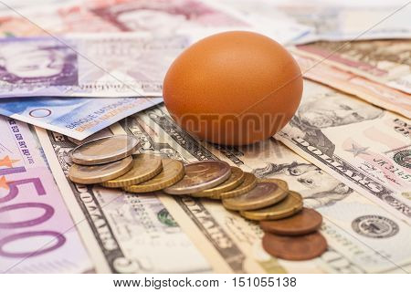 Egg lying on banknotes money and coins