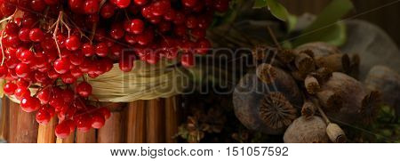 Still life with dried herbs, red viburnum berries, poppy seed boxes, flowers to Orthodox Christian holiday, Honey Spas.