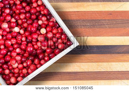 Full Punnet Of Fresh Ripe Red Cranberries
