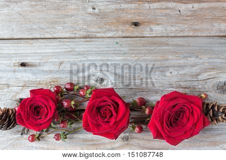 horizontal image of an old rustic wood background with three bold red roses connected with cranberries and twigs along bottom of image with lots of empty space for text great for a greeting card idea