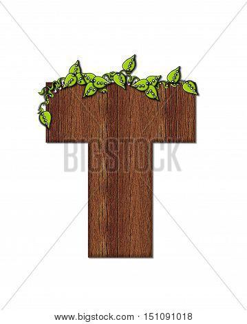 Alphabet Woodsy T