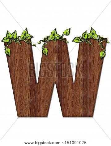 Alphabet Woodsy W