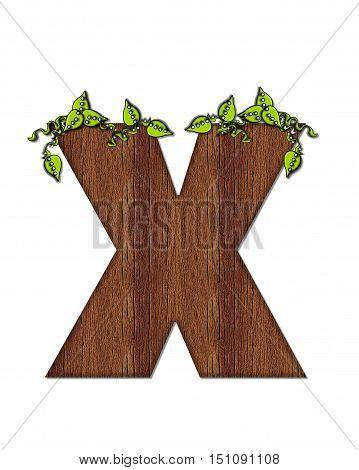 Alphabet Woodsy X