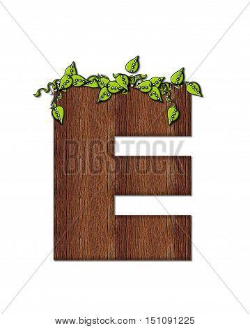 Alphabet Woodsy E