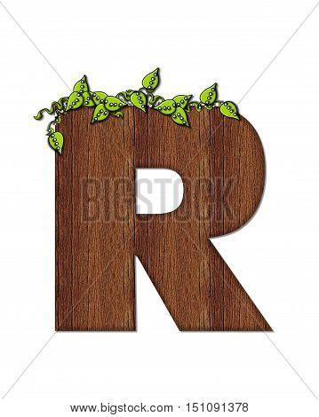 Alphabet Woodsy R
