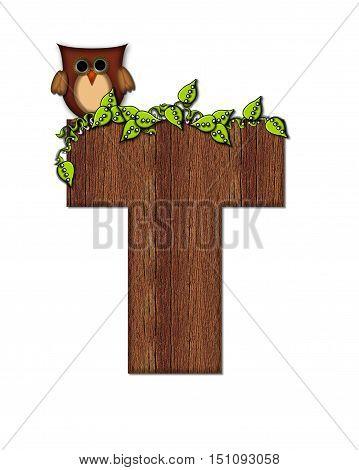 Alphabet Woodsy Owl T