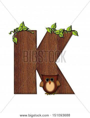 Alphabet Woodsy Owl K
