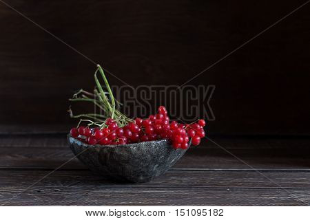 red viburnum in a gray ceramic bowl red viburnum on a brown background