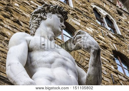 Detail of Michelangelo's David on the square of Signoria in Florence