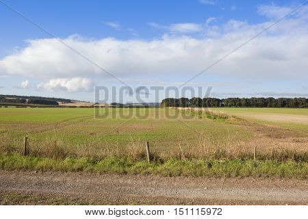 Yorkshire Wolds Farming Scenery