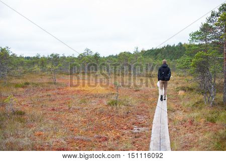 Young man walking on a wooden boardwalk in an autumnal peatland carrying a camera bag