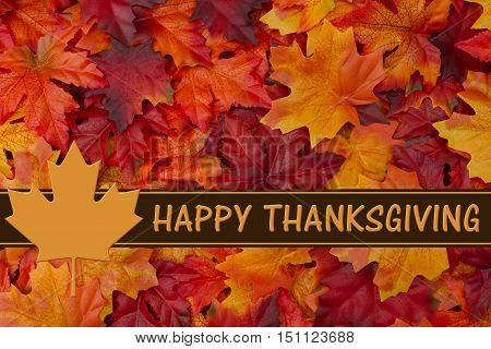 Happy Thanksgiving Greeting Some fall leaves with text Happy Thanksgiving