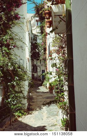 Wihte Alley Street in Cadaques Catalunya, Spain